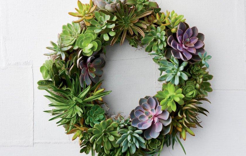 succulentwreath-override